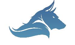 Rivenwolf Studios